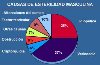 Blog esterilidad masculina