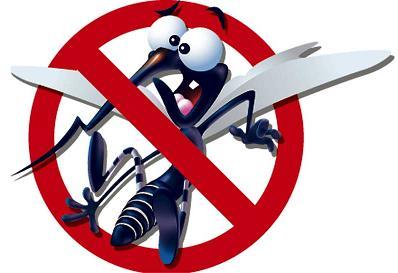 Imagen NO mosquitos